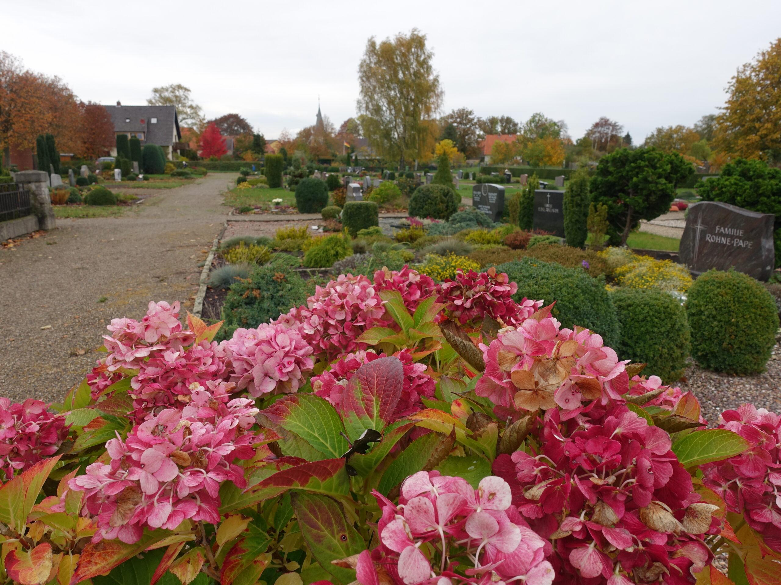 Friedhof Schulenburg Leine 3