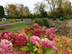 Friedhof Schulenburg Leine 4
