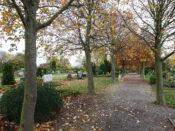 Friedhof Schulenburg Leine 5